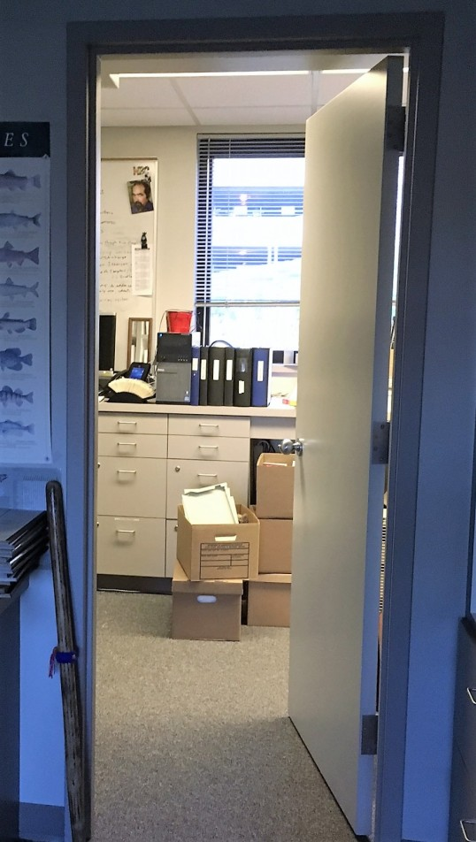 boxes-in-office
